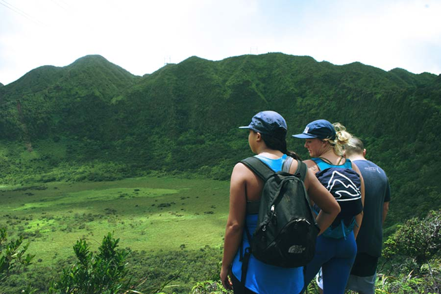 Image of Hikers with their backs toward the camera